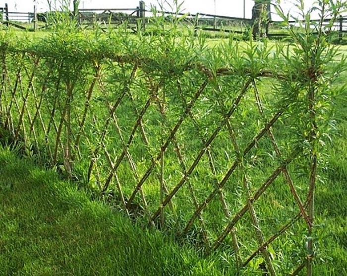 Как сделать забор на даче своими руками